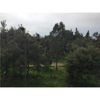Διαμέρισμα 90 τ.μ. προς πώληση, Ιλίσια, Αθήνα
