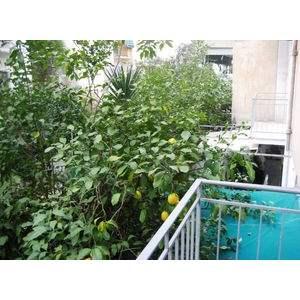 Διαμέρισμα 55 τ.μ. προς πώληση, Κυψέλη, Αθήνα